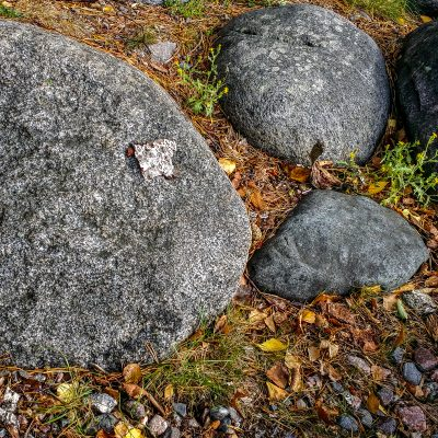 Kuvaaja: Mikko Vimalamitra